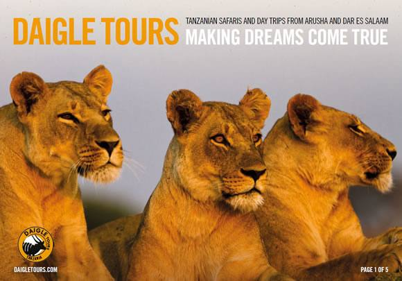 Daigle Tours Brochure