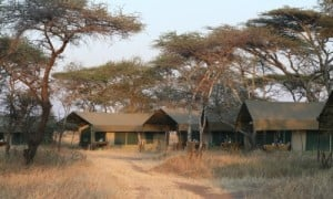 Serengeti Kati Kati Tented Camp_3