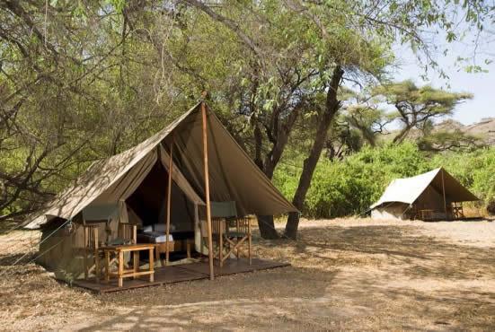 C&ing Safaris in Tanzania. Previous; Next & Camping Safaris in Tanzania with Daigle Tours