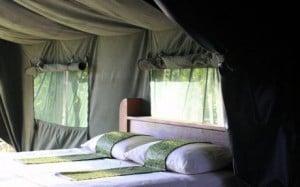 Udzungwa Hondo Hondo Forest Camp-1
